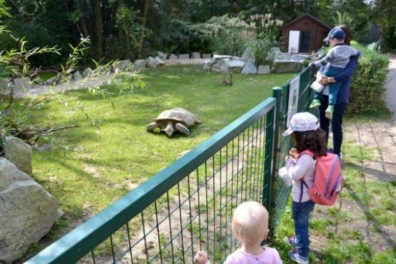 Linzer Tiergarten 2
