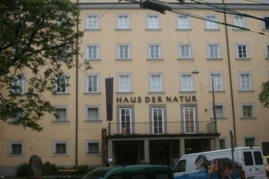 Haus Der Natur 1