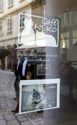 Cafe Neko 0