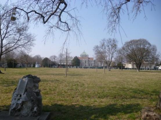 Wiener Zentralfriedhof - 11