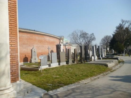 Wiener Zentralfriedhof - 6