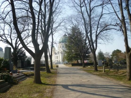 Wiener Zentralfriedhof - 9