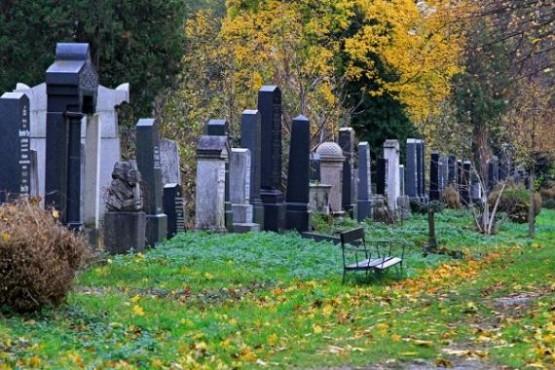Zentralfriedhof 3