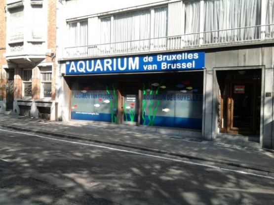 Aquarium Museum 1