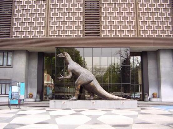 Musee des Sciences Naturelles 1