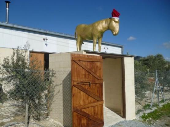 Donkey Farm (1)