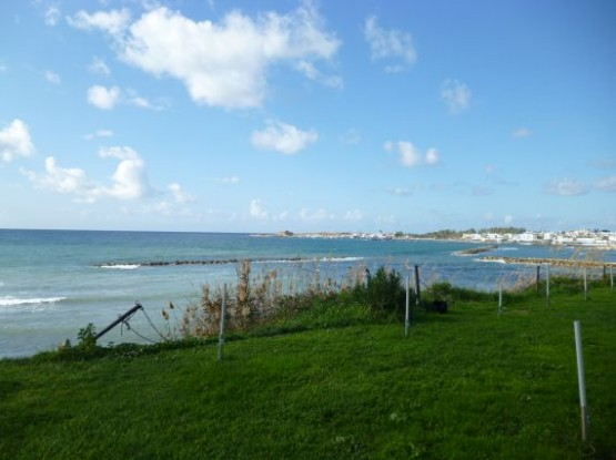 Paphos New Year 2014 - 2015 (20)