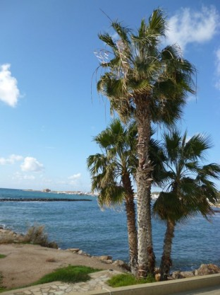 Paphos New Year 2014 - 2015 (22)