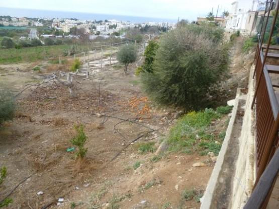Paphos Winter 2016 (5)