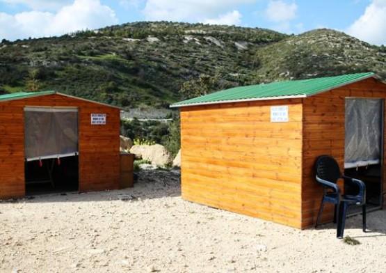 Agios Neofytos Monastery Cat Park 2