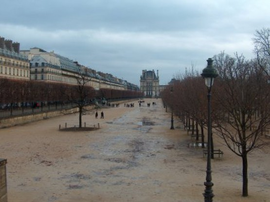 Jardin Des Tuileries - 1