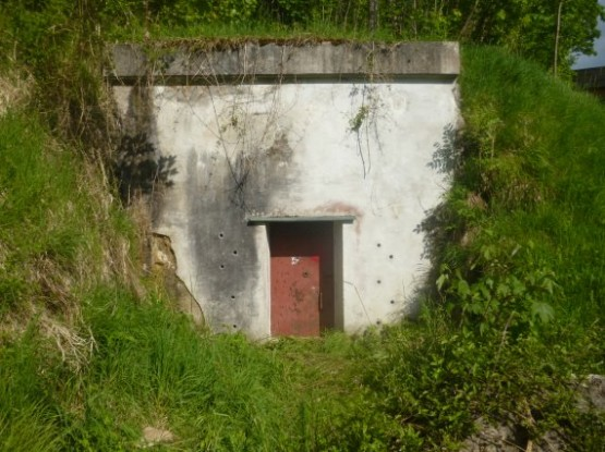 Bormanns House Bunker Exit