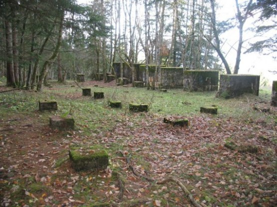 Koksbunker - Roof