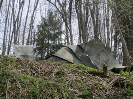 Unterwurflehen Ruins