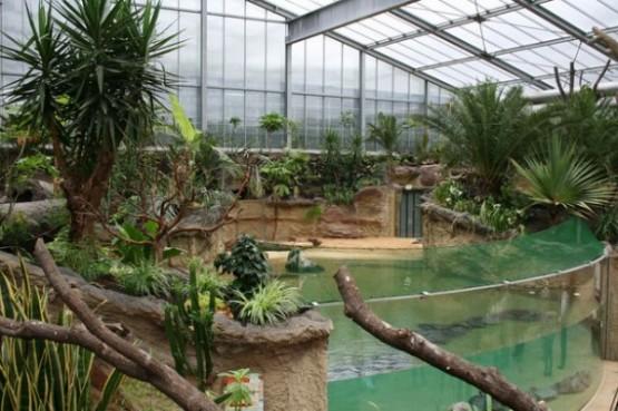 Zoologische Garten Koln 1
