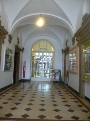 Palaontologisches Museum Munchen 2016 (1)