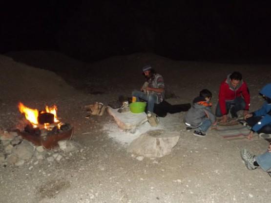 camel ranch - desert camp