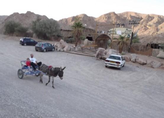 camel ranch - entrance