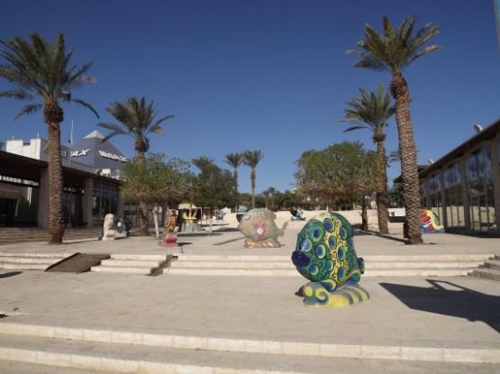 eilat museum - art garden - fishes