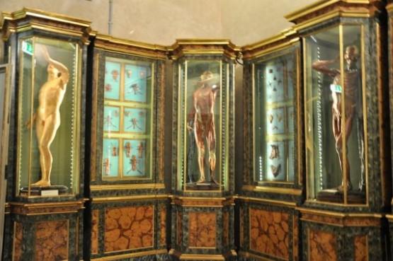 Musei Di Palazzo Poggi 3
