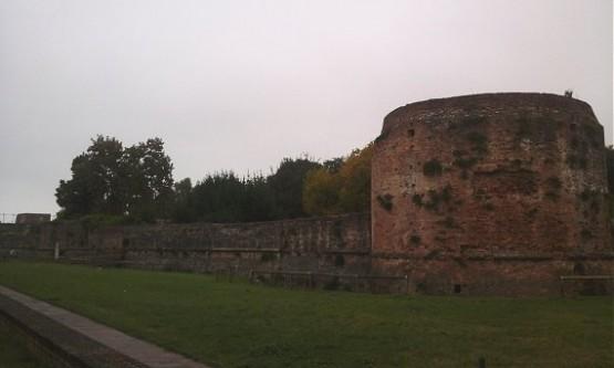 Rocca Brancaleone (2)