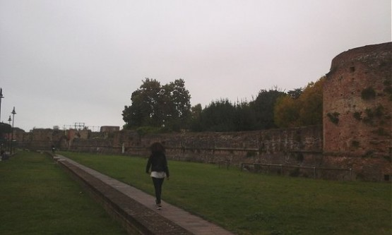 Rocca Brancaleone (3)