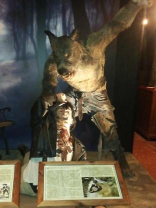 Museo Vampiri 1