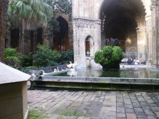 Catedral De Barcelona (1)