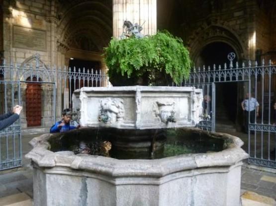 Catedral De Barcelona (3)