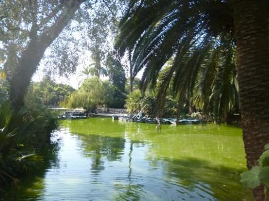 Parc De La Ciutadella (1)
