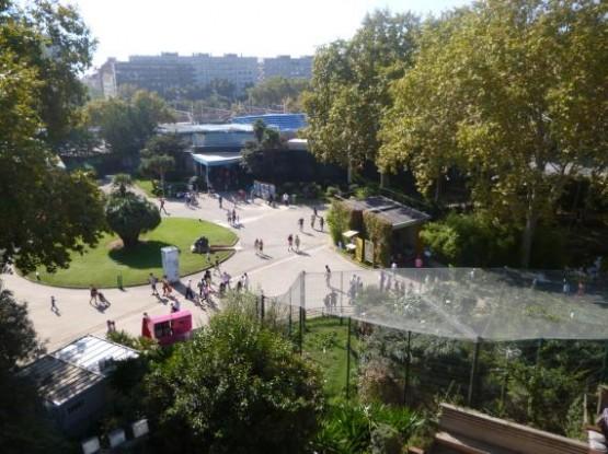 zoo (7)