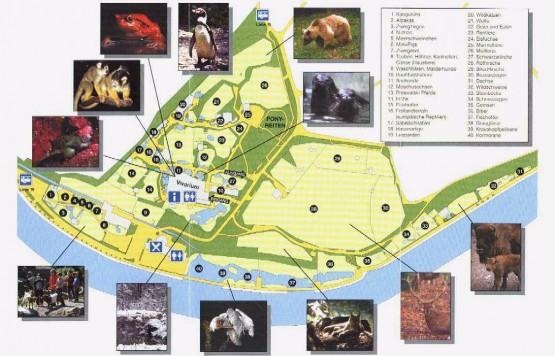 Tierpark Dahlholzli - plan